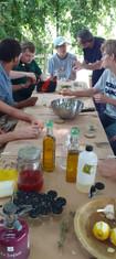 Atelier des herbes aromatiques
