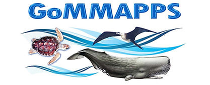 GoMMAPPS logo.jpg