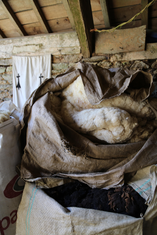curons de laine