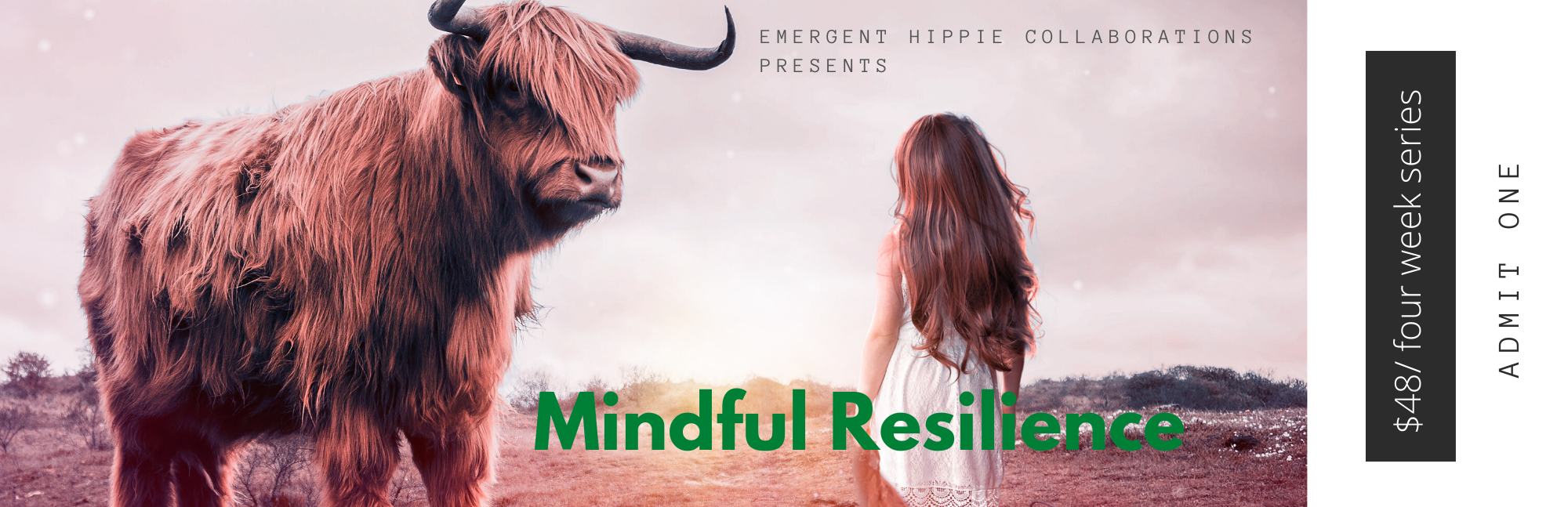 Mindful Resilience for Spiritual Abuse