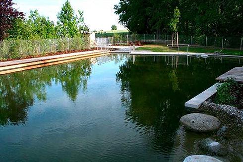 Pool_Schwimmteich.jpg