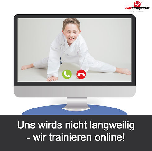 Online_Kampfsport_Training.jpg