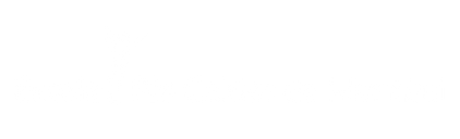 logo horitzintal BLANC.png