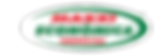 MAXXI---Logo.png
