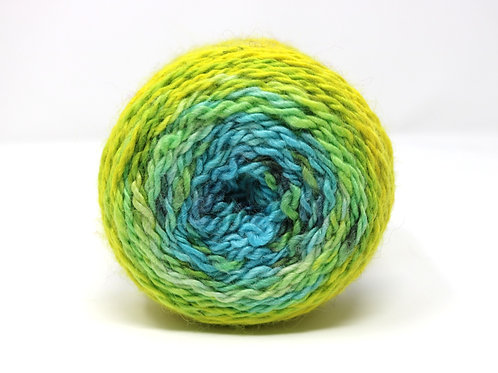 Alpaca Progressive - Blue/Yellow