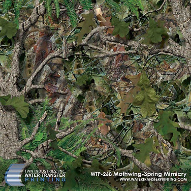 WTP-268 Mothwing Spring Mimicry