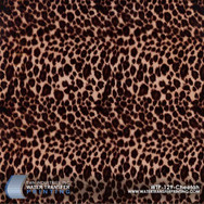 WTP-129 Cheetah