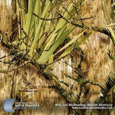WTP-265 Mothwing Marsh Mimicry