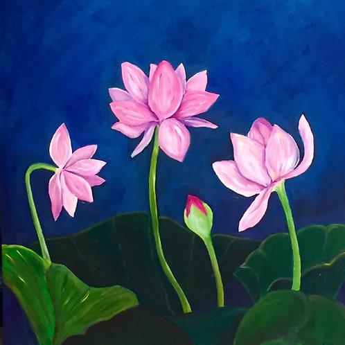 Balboa Lotus