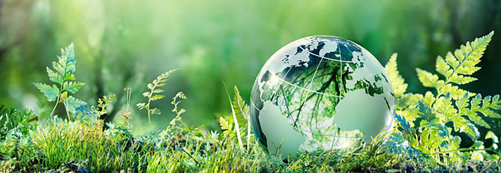 sustainability header1.jpg