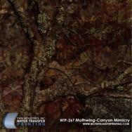 WTP-267 Mothwing Canyon Mimicry