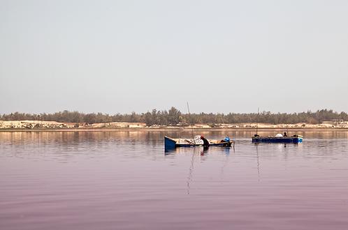 Barques au Lac Rose