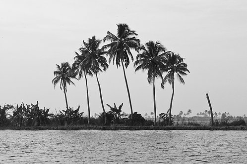 Inde - Backwaters
