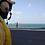 Thumbnail: Chiens jaunes