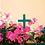 Thumbnail: Rosaire