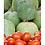 Thumbnail: Inde - Marché vert