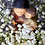 Thumbnail: Notre-Dame de Grâces