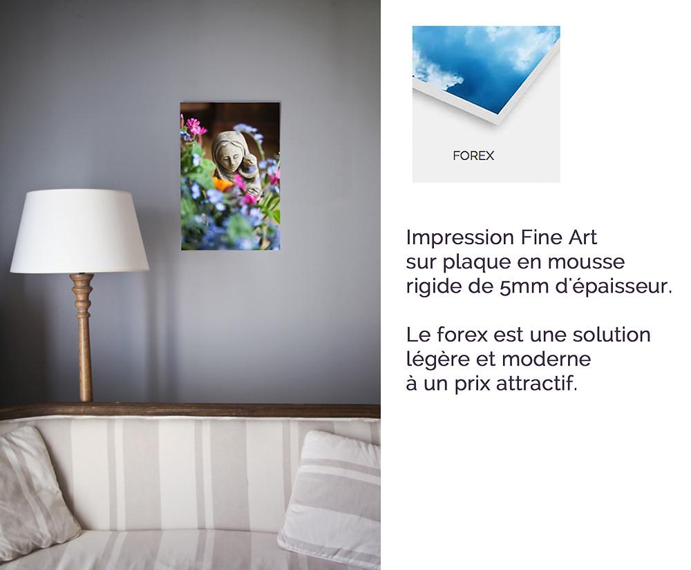 photo forex Notre-Dame des Champs