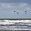 Thumbnail: Contre vents et marées
