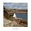 Thumbnail: Port Manec'h