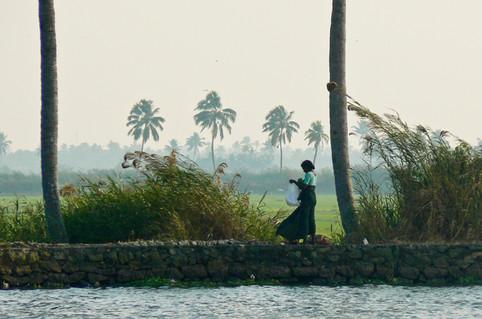 India - woman in green