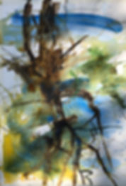 abstract sketch of a tree ealy spring