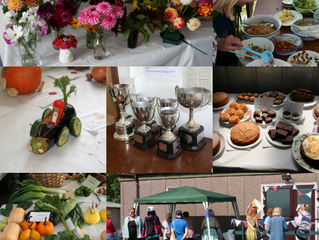 2017 Annual Show and BBQ
