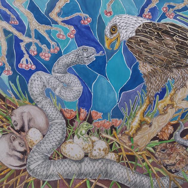 Snake and Eagle Meet