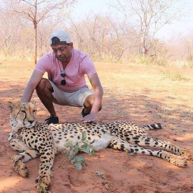 African Safari Vacations