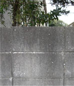 outer-wall-img-2_1.jpg