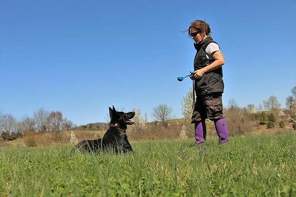 Teach Your K9 Dog Training