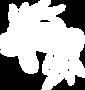 EWM-web icons-2-15.png