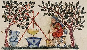 1599px-Folio_Materia_Medica_Dioscurides_