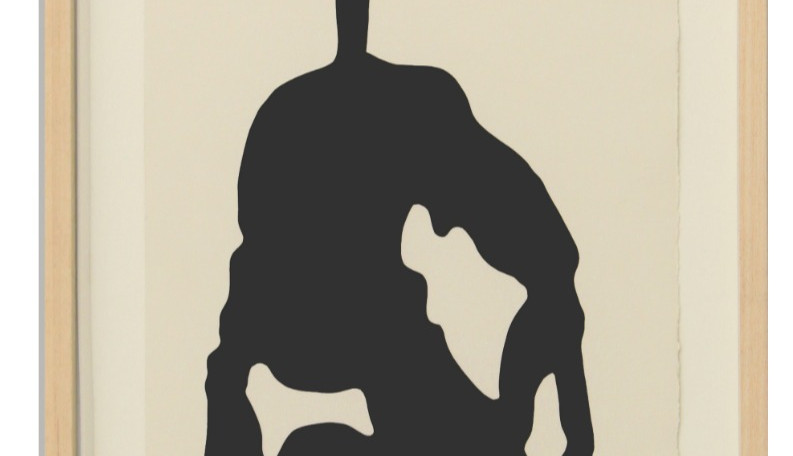 Daredevils 2010 78 cm x 30 cm
