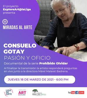 Miradas al arte - Consuelo Gotay