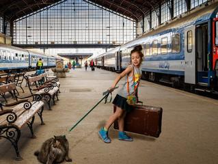 Билет на поезд для вашего питомца теперь можно приобрести онлайн
