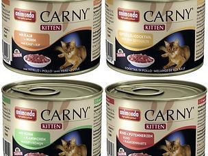 Чем кормить кошку Rangpurcat