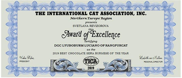 Award of Excellent
