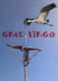 la_grue_virgo_Mélanie.JPG