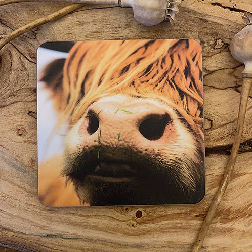 Highland Cow Drinks Coasters - close up