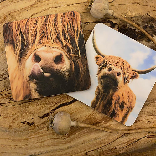 Set of Four Mixed Highland Cow Coasters