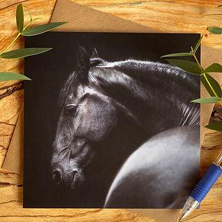 Horse cards.jpg