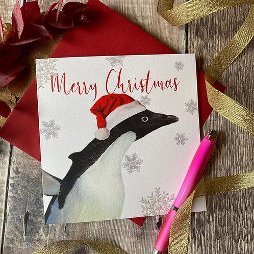 Penguin in  A Santa hat Christmas Card