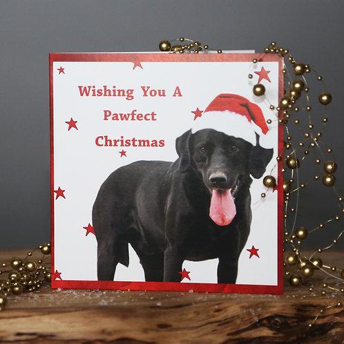 Wishing you a Pawfect Christmas - Labrador Christmas card