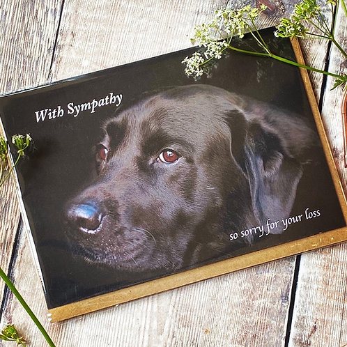 With Sympathy Card with Black Labrador on front