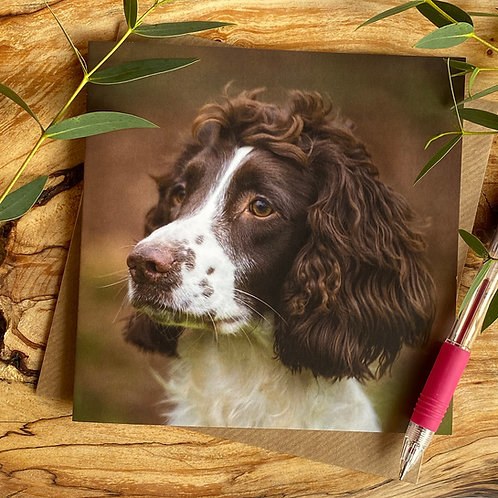 Did you Call - Spaniel Greeting Card