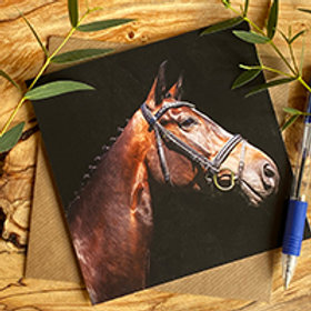EGC012 Horse Greeting card