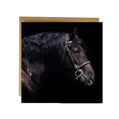 Dark Horse Portrait Greeting card