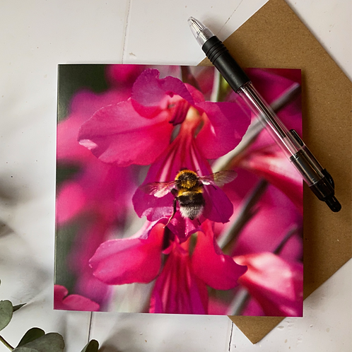 Bee seeking honey from flower Greeting Card