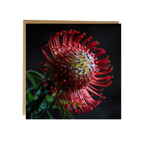 Fine art Flower Greeting Card